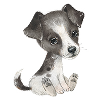 honden strijkapplicaties