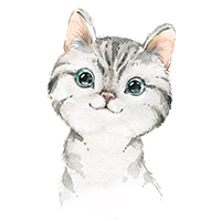 katten poezen strijkapplicaties