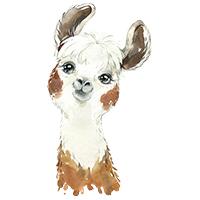 lama alpaca strijkapplicaties